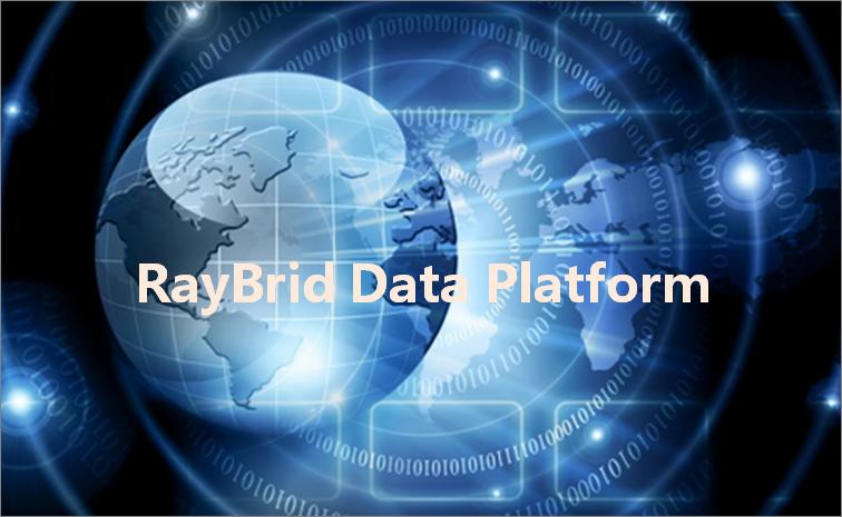 混合业务数据云平台 - RayBrid